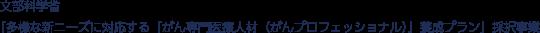 文部科学省「多様な新ニーズに対応する『がん専門医療人材(がんプロフェッショナル)』養成プラン」採択事業